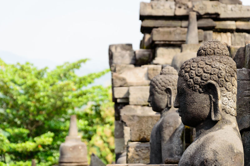 Close up of Buddha statue in the Borobodur temple on Java, Indonesia Buddha INDONESIA Java Statue Ancient Ancient Civilization Architecture Belief Built Structure Craft Creativity History Human Representation Place Of Worship Prambanan Religion Representation Sculpture Spirituality Statue Stone Material The Past