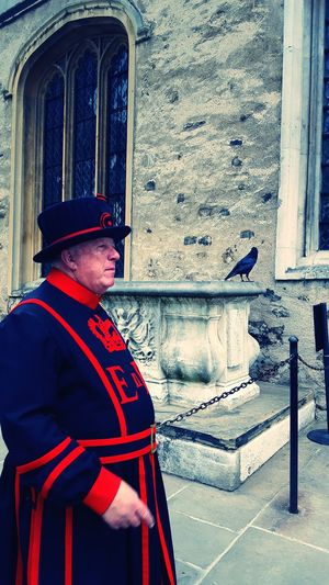 One Person London London Tower Guard Raven One Man Only Uniform Red Animals Life Exquisite Trip Vacation Crown Jewels Security