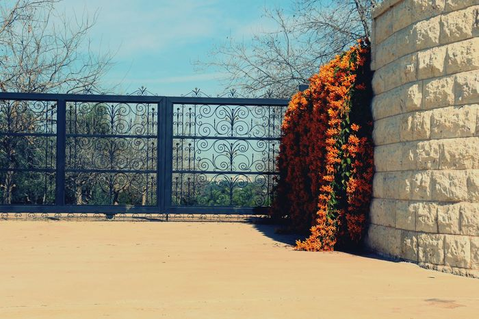 Im coming home. Hanging Out Hello World Color Portrait Gate Popular Beautiful Day Eyestoriestudio