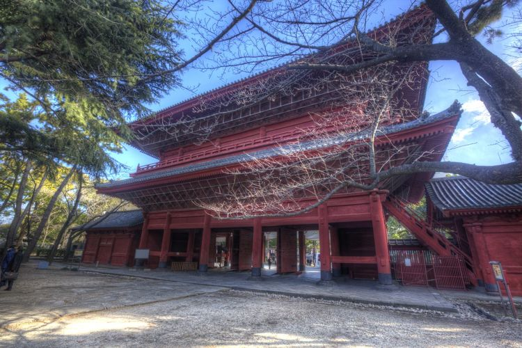 Japanese Temple Pagoda Architecture Asian Temple Branch Building Exterior Built Structure Day Low Angle View No People Outdoors Roof Sky Temple Tree