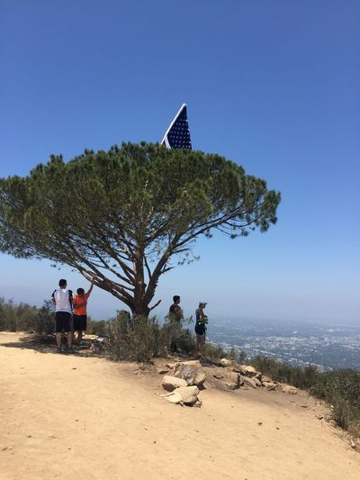 Hiked up to the Magic Tree on this, the 4th of July. Nature On A Hike Magictree 4th Of July