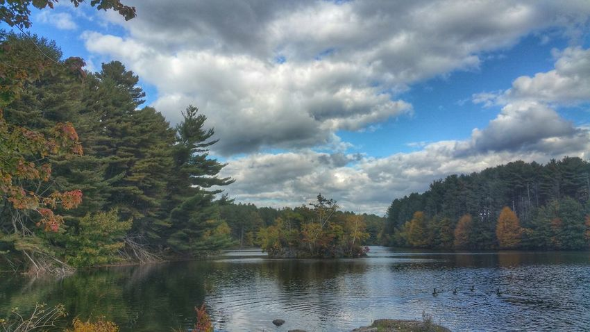 Daydreaming EyeEm Nature Lover Forest Favorite Places Miss This  Peace And Quiet Clouds And Sky Meditation Autumn Camera Roll Nature