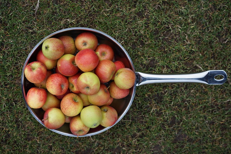 High Angle View Of Apples In Pan On Grassy Field