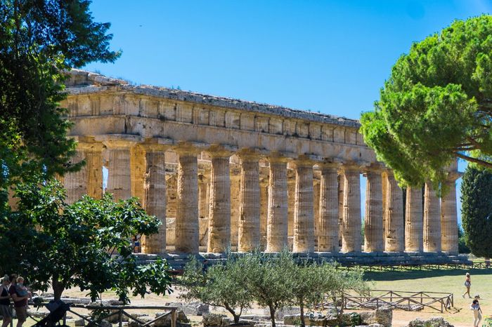Temple of Neptune, Paestum Roman ruins, Italy Roman Ruins Temple Of Neptune Architecture Built Structure Plant Building Exterior History Tree Nature Travel Destinations Sky Architectural Column No People Ancient The Past Travel Old Ruin Day Tourism Growth Old Blue