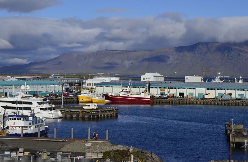 Boats in the harbor on a sunny day in Iceland Iceland Day Eyem Gallery Harbor Mode Of Transportation Nature Nautical Vessel Outdoors Pjpink Sailboat Sea Ship Transportation Water