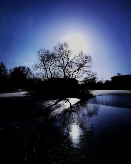 Słupsk Slupsk Blue Blue Color Blue Sky Nature Nature Photography Reflection Silhouette Nature Tranquility Water Lake No People Tree Beauty In Nature