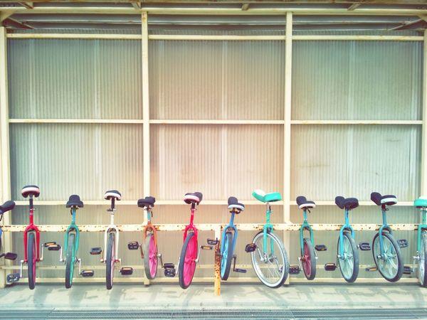 小学校の土曜参観へ。 小学校 一輪車 Saturdayafternoon