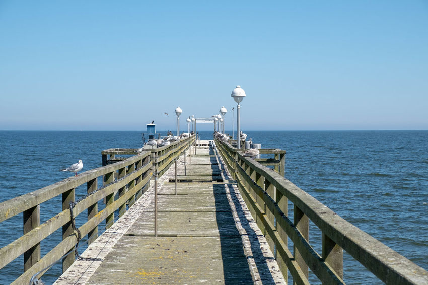 Usedom, Germany Architecture Beauty In Nature Blue Built Structure Clear Sky Day Diminishing Perspective Direction Horizon Horizon Over Water Koserow Nature No People Outdoors Pier Railing Scenics - Nature Sea Seabridge Sky The Way Forward Tranquil Scene Usedom Water