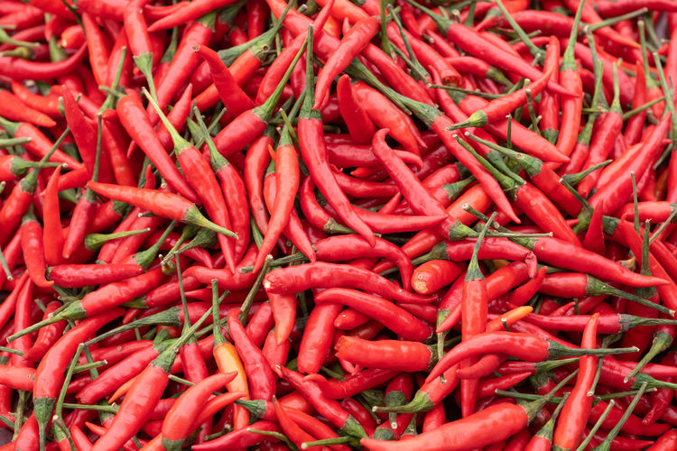 red Peppers vegetable Red Food And Drink Vegetable Pepper Food Chili Pepper Spice Large Group Of Objects Full Frame Backgrounds Abundance Red Chili Pepper Freshness Market No People For Sale Still Life Retail  Wellbeing High Angle View Red Peppers Pepper - Vegetable