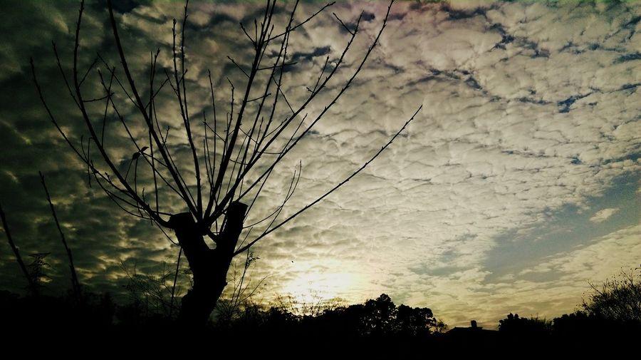 冬陽 Sunset 合興車站