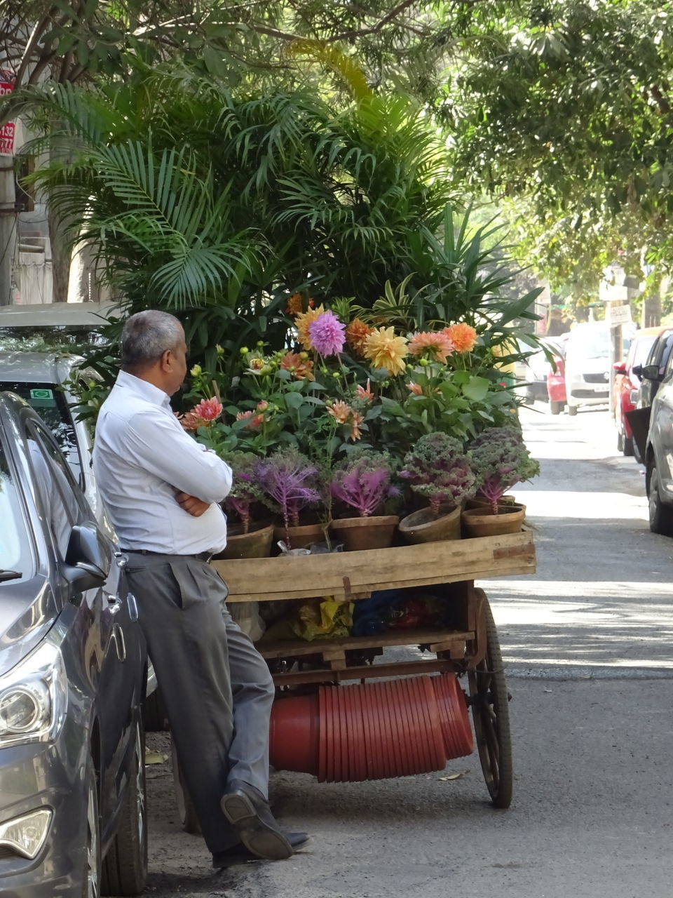 plant, flowering plant, flower, real people, men, transportation, street, day, land vehicle, one person, mode of transportation, tree, city, rear view, nature, incidental people, road, motor vehicle, lifestyles, outdoors, flower arrangement, bouquet