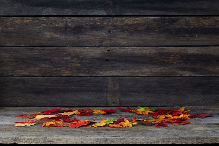 Background Wood Wooden Autumn Floor Fall Leaves Table Texture Board Yellow Natural Nature Old Plank Season  Wall Forest Brown Space Pattern Rustic Tree Textured  Desk Abstract Red Foliage Maple Empty Backdrop Decoration Frame Grunge Hardwood Thanksgiving Orange Dark Copy Vintage Wood - Material No People Food And Drink Food Freshness Flower Close-up High Angle View Flowering Plant Orange Color Plant Still Life Vegetable Flame Day
