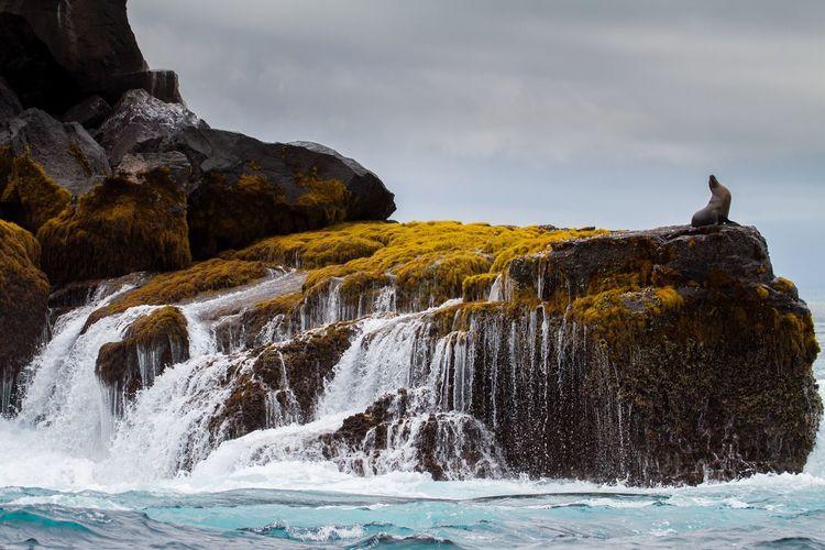 Waves splashing on rocks against sky