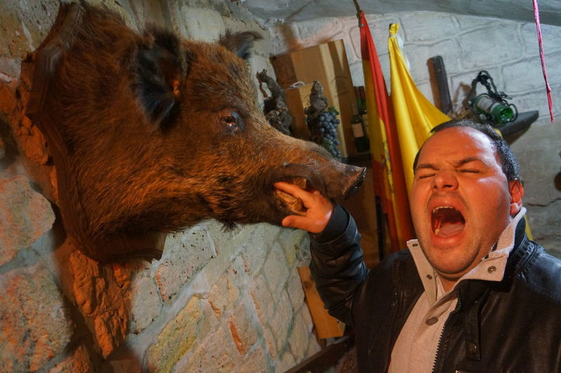Mischievous man putting hand in mouth of dead boar