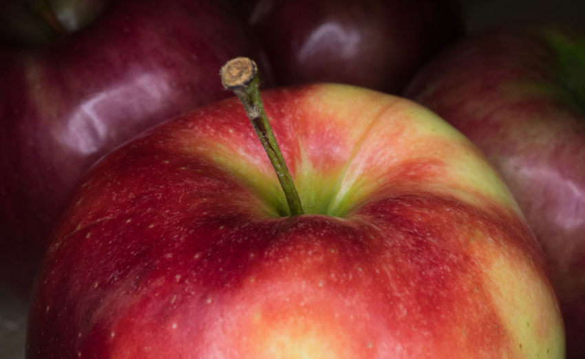 Healthy Eating Fruit Food And Drink Food Freshness Wellbeing Apple - Fruit Red Close-up No People Organic Juicy Ripe Group Of Objects Healthy Lifestyle Plant Studio Shot Focus On Foreground Plant Stem Agriculture