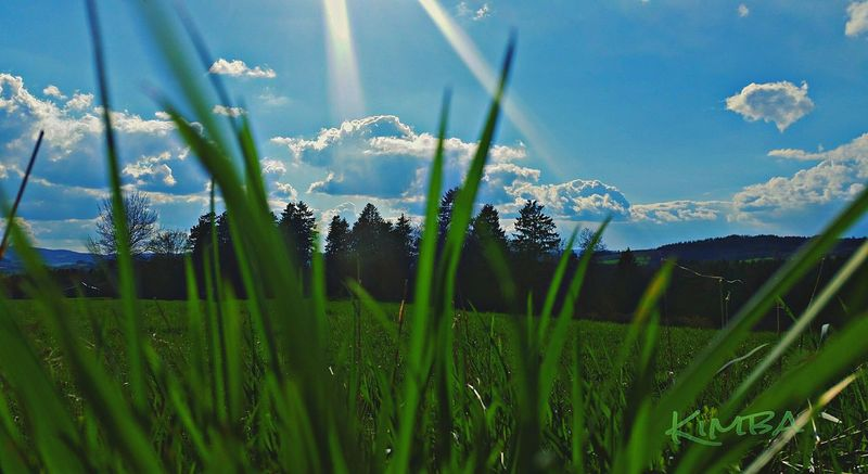 Taking Photos Naturelovers Nature Nature Photography Nature_perfection Iggers Igers EyeEm Best Shots Igsuper_shotz Samsungphotography Igbest Iggermany Iger April Sunset #sun #clouds #skylovers #sky #nature #beautifulinnature #naturalbeauty #photography #landscape