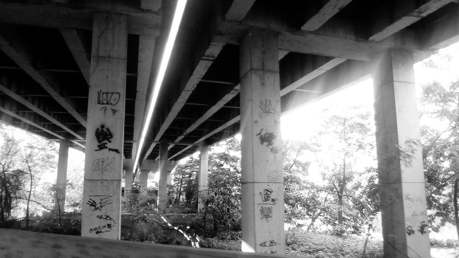 Bridge - Man Made Structure Connection Architecture Built Structure Engineering Architectural Column Transportation Below Underneath Day No People Outdoors Tree Girder Under Black And White