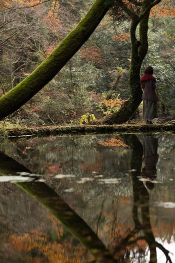 Tree Nature Reflection Beauty In Nature Water Rear View Autumn One Person Japan Eye Em Nature Lover Moss My Favorite Place