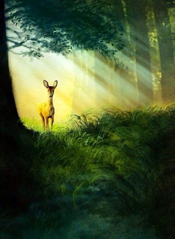 Deer Mypainting Streamzoofamily StreamzooPics