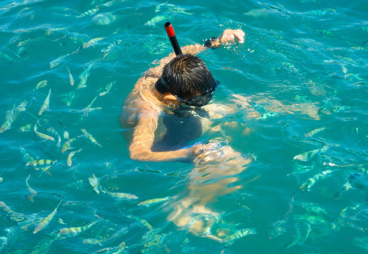 ASIAN BOY ENJOYING SNORKELING SEEING FISH IN CORAL REEF UNDER WATER Snorkel Diving Animal Themes Beauty In Nature Day High Angle View Leisure Activity Lifestyles Nature One Person Outdoors Real People Swimming Swimming Pool Water Waterfront