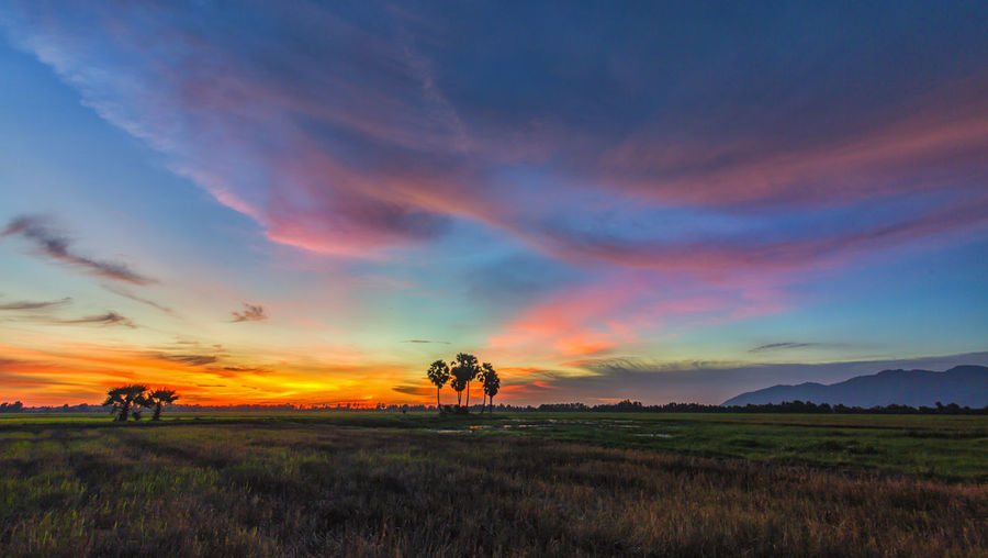 Sunset on Tri-Ton Field, An Giang, Vietnam Beauty In Nature Cloud - Sky Sunset