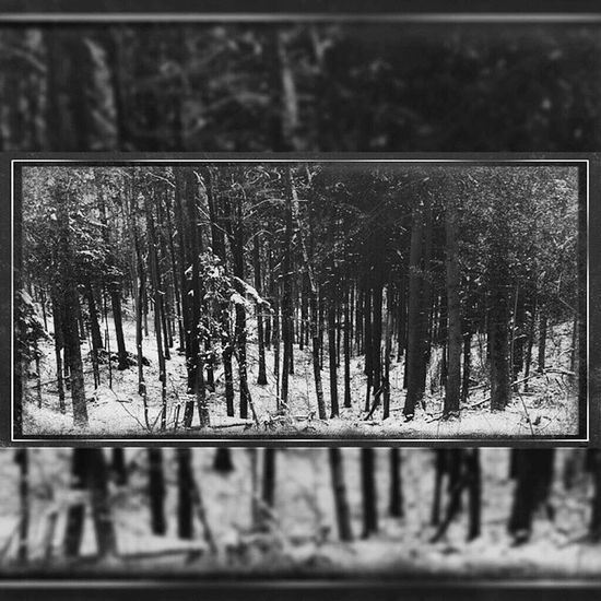 I have given you something real. You thought that you'd never feel. I have given you something so real. A wound that will never heal. AmenRa Churchofra MassIIII Postmetal nature wanderlust hiking frost winter forest wood woods trees tree outdoor germany snow landscape natureshot naturegram mothernature cold weather white ice german bavaria munich