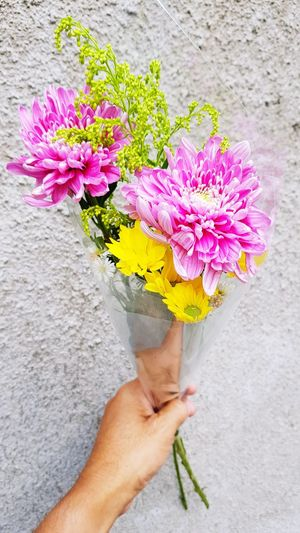 Cropped hand of man holding bouquet against wall
