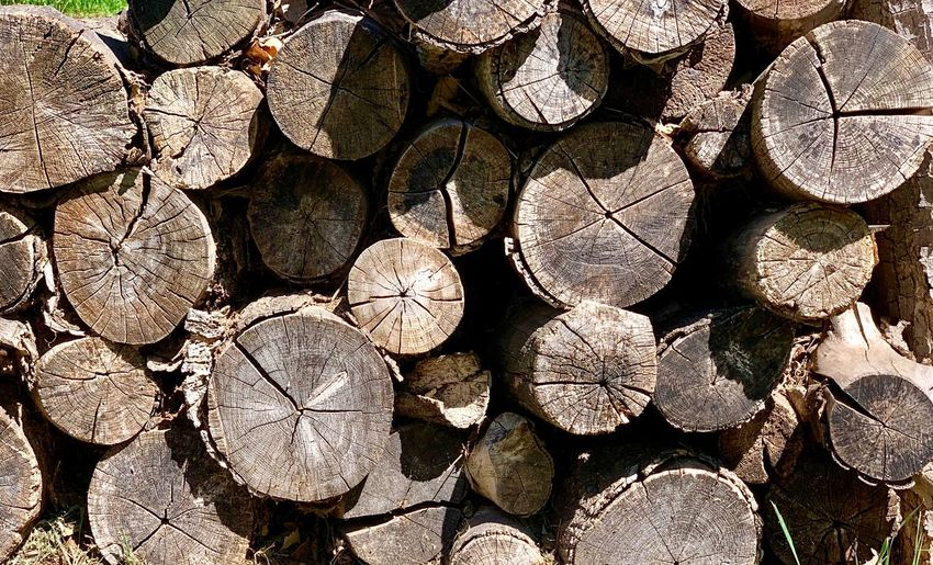 Full Frame Backgrounds No People Sunlight Large Group Of Objects Nature Abundance Day Textured  Pattern Firewood Log Outdoors Wood Timber Close-up Repetition Stack Land Forest