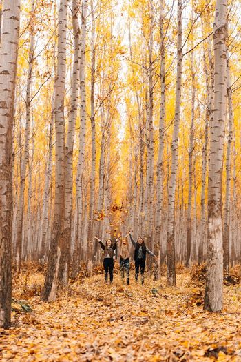 Connected By Travel Autumn Leaf Change Forest Nature Tree WoodLand Cold Temperature Outdoors Full Length Adult Togetherness Scenics Yellow People Winter Day Beauty Deciduous Tree