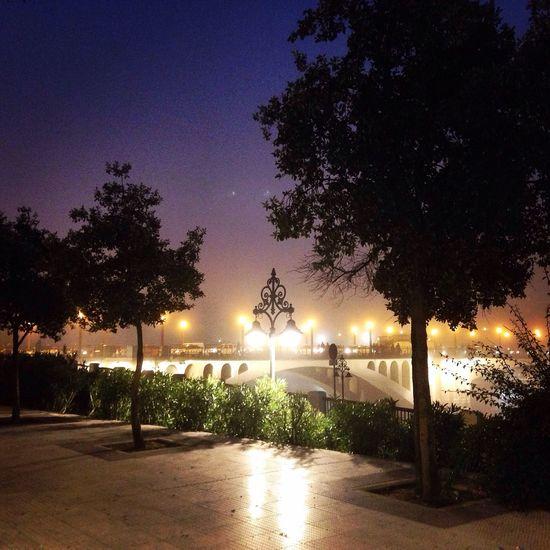 Sevilla Lights Night Lights