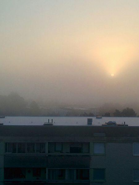 mist. Misty Early Morning Sunrise Misty Sunrise