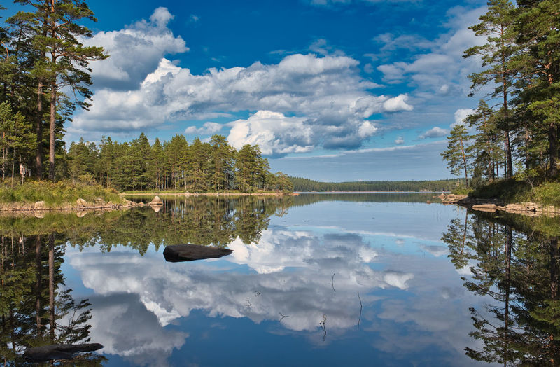 Tivedens National Park, Sweden Reflection Water Cloud - Sky Sky Tree Lake Tranquility Tranquil Scene Beauty In Nature Plant Scenics - Nature Nature Day No People Non-urban Scene Waterfront Idyllic Outdoors Symmetry Tivedens National Park National Park Sweden Forest September North