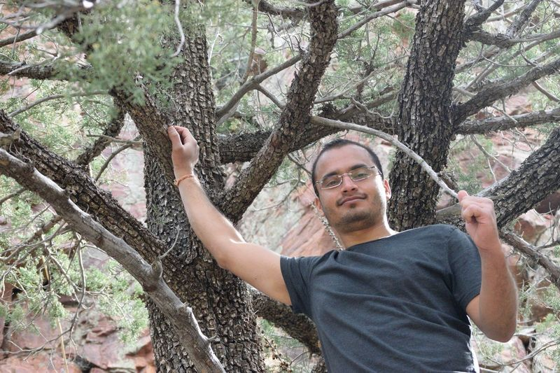 Low Angle Portrait Of Man Against Tree In Forest