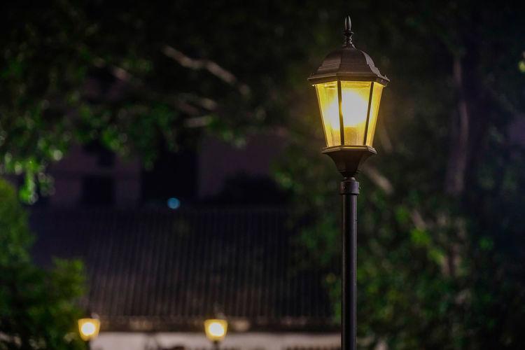 Illuminated street light against trees at night