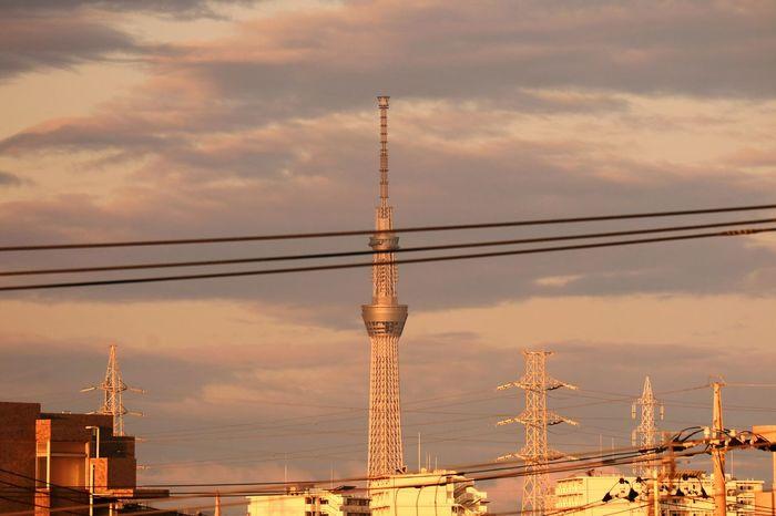 Tokyo Sky Tree Skytree Tower Morning Glow Morning Sky Highvoltage Wire Tokyo Japan Cloud Cloudporn Morning