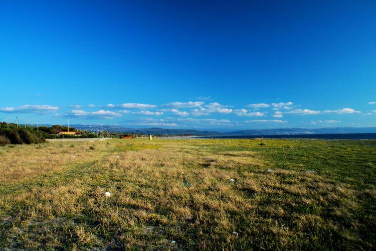 Beach Blue Blue Sky Blue Sky And Clouds Coast Coastline Field Grass Green Growth Landscape Meadow Nature No People Outdoors Seaside Shore Shoreline