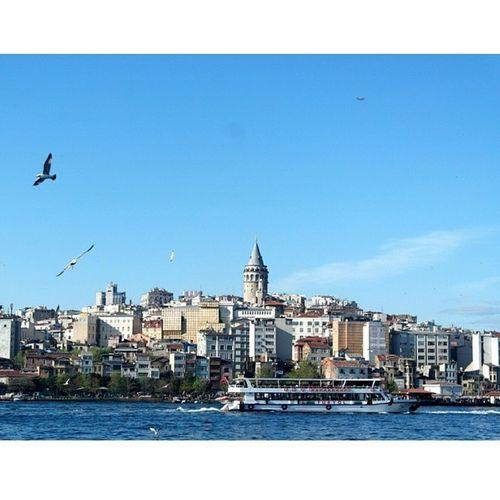 Galata sevdası ?? Istanbul Galatatower Galata Istanbuldayasam sea martı vapur samsung nx1000 photooftheday