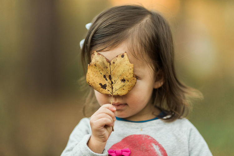 Little Girl Looking Through Fall Leaf Children Exploring Lifestyle Adorable Child Childhood Children Only Close-up Cute Day Fall Focus On Foreground Girls Holding Kid Leaf Leaves Lifestyle Photography Lifestyles One Girl Only One Person Outdoors People Season  Toddler
