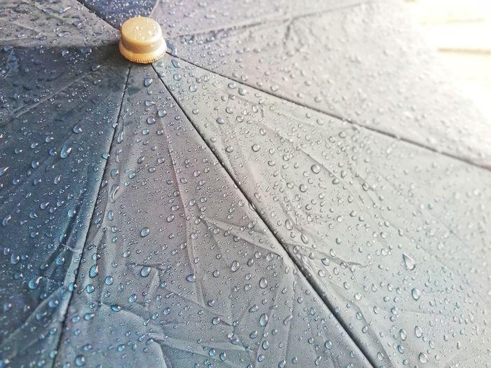 Rain umbrellas that are wet rain stains on the umbrella. Water Close-up Droplet Drop RainDrop Web Detail Glass Spider Web Rainy Season High-speed Photography Dripping Office Block Rainfall Arachnid Blade Of Grass Textured  Water Drop Dew Alcoholic Drink Spider Leaf Vein Rain Wet Monsoon LINE
