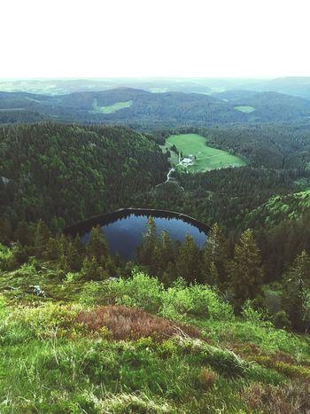 feldsee. Nature Feldsee Feldberg Beauty In Nature Schwarzwald Blackforest