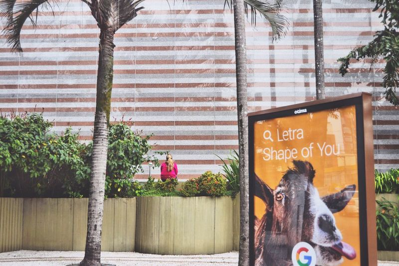 🌴🙎🏼🐐😛 Capture The Moment Sitting Rear View Text Funny Pics Funny Faces Banner Poster EyeEm Best Shots Eye4photography  EyeEm Gallery One Woman Only Urban BYOPaper! City Life Streetphotography Street City Outdoors Pink Selective Focus Thinking Taking A Break Photobomb The Street Photographer - 2017 EyeEm Awards Stories From The City The Street Photographer - 2018 EyeEm Awards