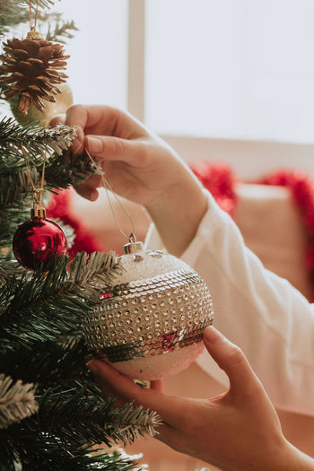 Midsection of woman holding christmas tree at home
