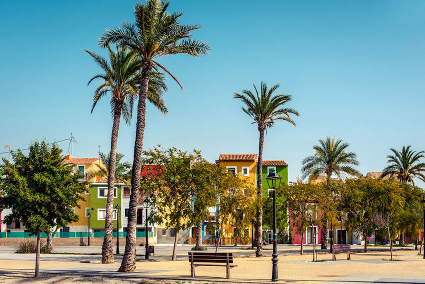 Multicolored town of Villajoyosa / La Vila Joiosa. Coastal town of Costa Blanca. Province of Alicante, Valencian Community, Spain Alicante, Spain Blue Sky Colorful Costa Blanca Famous Place Houses La Vila Joiosa Landscape Multi Colored Palm Trees Picturesque Village Residential Building Scenery South SPAIN Street Sunny Day Tourist Resort Town Travel Destinations Tropical Climate Typical Houses Villajoyosa