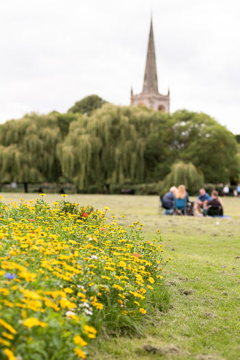 Foreground of meadow flowers and family having a picnic on a cut grass park with a church spire and willow trees in the distance. Church Spire Cut Grass Family Family Picnic Meadow Flowers Picnic Public Park Architecture Beauty In Nature Field Flower Freshness Growth Lifestyles Meadow Nature Outdoors People Plant Real People Spire  Willow Tree Yellow