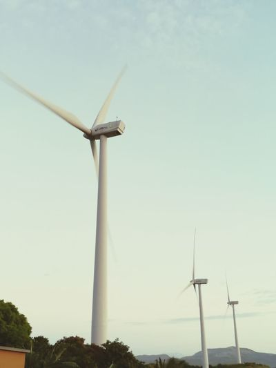 Environmental Conservation Wind Power Alternative Energy Wind Turbine Renewable Energy Windmill Nature Sky Fuel And Power Generation No People Social Issues Outdoors Technology Power In Nature Day