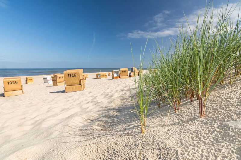 Beach grass and sand with beach chairs in the background on the island of Sylt, Germany Beach Dune Grass Sea Ocean Beach Vacation Coast Bathing Holiday Beach Chairs Beach Grass Relaxation Recreation  North Sea Baltic Sea Sylt Amrum North Germany Tranquility Landscape Dune Landscape Loneliness Relax Vacation Vacation Sand Water Sand Beach Lonely Travel Vacation Time Holiday Season Summer Vacation Summer Holidays Island North Sea Coast Germany North Sea Island Summer Sun Health Shore Holiday Island North Frisia North Frisian Tourism Time Out Maritime East Coast Ammophila