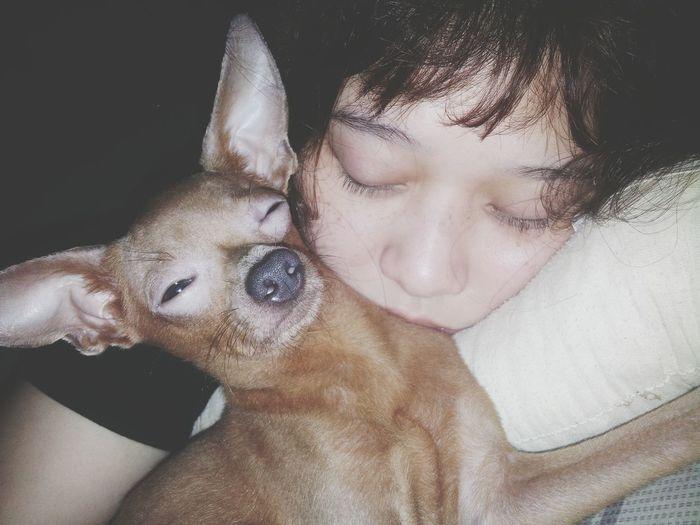 Ngủ vào một ngày đẹp trời Sleepingtime Mèovazim