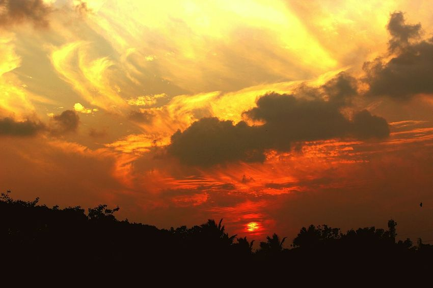 Fiery Sunset Beautiful Sunset Clouds And Sky EyeEm Nature Lover Sky_collection