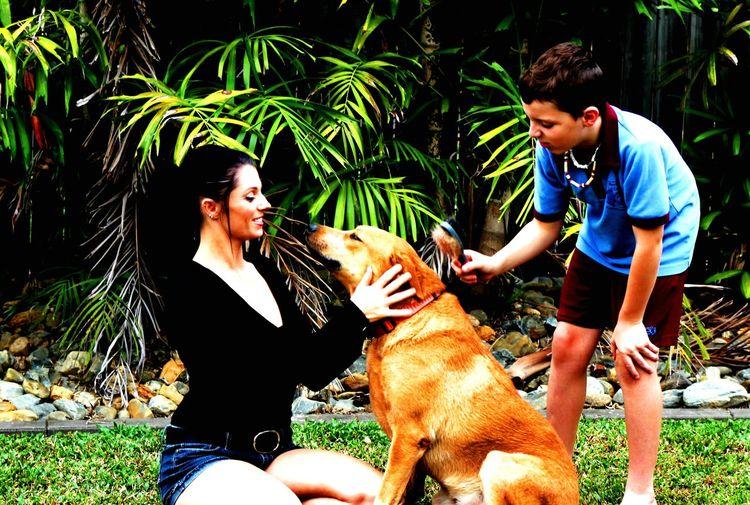 EyeEm Best Shots EyeEm Gallery Red Cattle Dog I Love My Dog Flowers,Plants & Garden