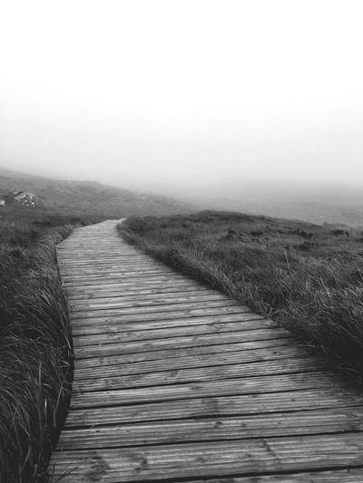 Tranquility The Way Forward Ireland Clear Sky Tranquil Scene Boardwalk Fresh On Eyeem